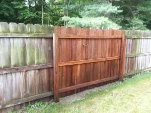 Fence Sample
